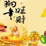 anh-bia-chuc-mung-nam-moi-2018-12